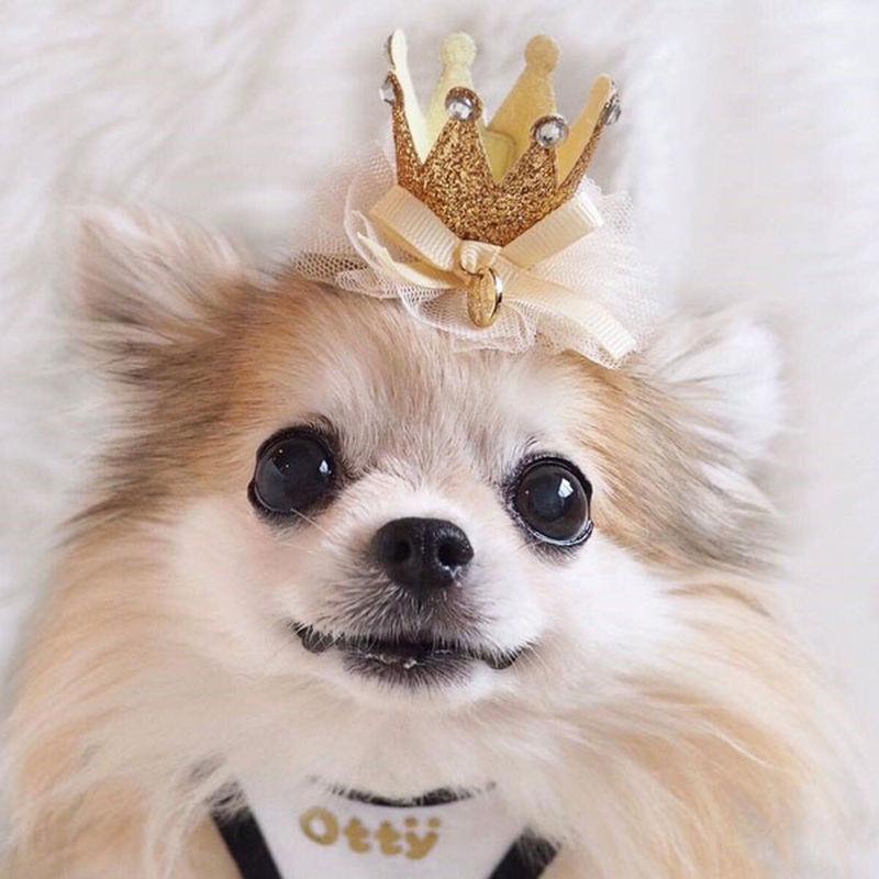 OH! MY HONEY・皇冠★发夹 &发带